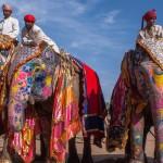 Горящие туры в Индию из Челябинска