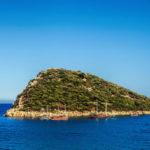 Черепаший остров Дальян в Турции